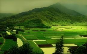 Пейзажи: природа, холмы, зелень