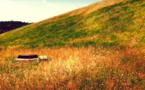 Рендеринг: природа, пейзаж, ландшафт, желтая трава, зеленая трава, осень, ржавая крышка люка, яркие краски, стиль