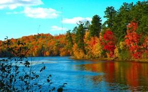 Пейзажи: осень, холод, озеро, вода
