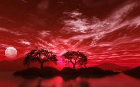 Рендеринг: розовая, луна, деревья, море, аптека, улица, фанарь :-)