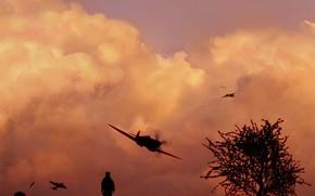 Авиация: небо, свет, самолет, скорость