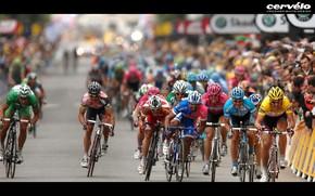 Спорт: соревнования, победа, велосипед, гонка