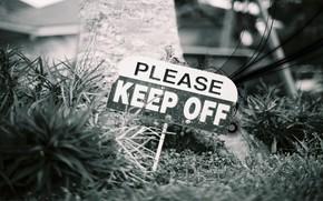 Настроения: злость, предупреждение, надпись, табличка, знак, ближний план, стиль, трава