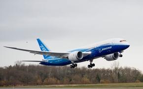 boeing,  787,  dreamline,  полёт обои, фото
