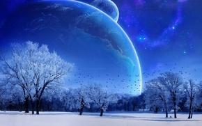 Стиль: зима, луна, небо, голубой, деревья