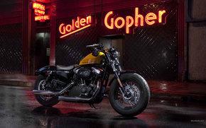 ���������: Harley-Davidson, Sportster, XL 1200 X Sportster Forty-Eight, XL 1200 X Sportster Forty-Eight 2012, ����, ���������, moto, motorcycle, motorbike