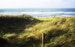 Пейзажи: море, зелень, волны, небо, люди