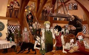 Аниме: кабак,  персонажи,  гермиона,  рон,  хагрет,  дракон,  бедлам,  волк