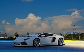Машины: lamborghini, aventador, lp-700-4, white, ламборгини, авентадор, белый, вид спереди, небо, облака, фонари, автомобили, машины, авто