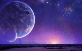 Космос: небо, планета, закат, птицы