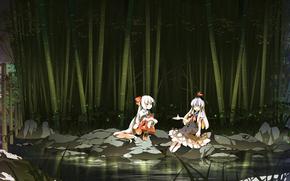 Обои Игры: игра, аниме, девочки, речка, ночь