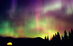 Космос: лес, небо, северное сияние