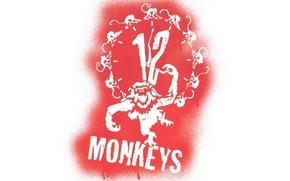 Фильмы: 12 обезьян, Twelve Monkeys, фильм, кино