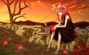 Аниме: арт, девушка, пруд, кувшинки, лотос, цветы, вода, дерево, камни, клубок, нить