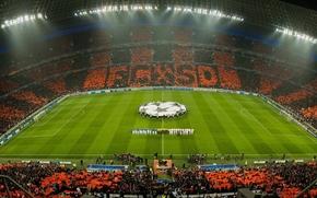 Спорт: Донбасс Арена, Футбол, ЛЧ, Фанаты, Поле, Шахтер, Челси, Оранжевый, Матч, Лига Чемпионов