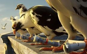 Животные: голубь, птицы, полет