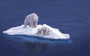 Разное: океан, льдина, арт, животные, белые, медвежата, вода, медведи, медведица