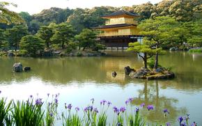 Пейзажи: азия, ирисы, озеро, деревья, солнечно, пруд, камни, островок, дом, хвоя