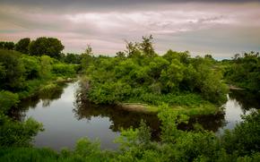 Пейзажи: речка, островок, деревья, пейзаж