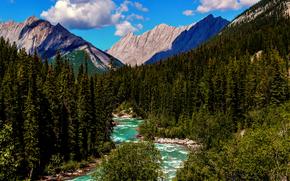 Пейзажи: Северная Америка, Канада, Альберта, Национальный парк Джаспер, Кордильеры, Скалистые горы, лето, Август, лес, река, горы, небо, облака