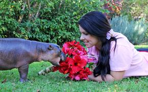 Обои Разное: бегемотик жрёт красивые цветы, девушка тоже ничего