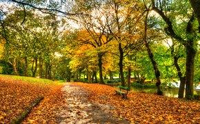 Пейзажи: природа, река, парк, скамейка, листья, осень, небо, вид, вода, аллея, прогулка, лес, деревья