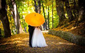 Настроения: смокинг, новобрачные, настроения, полноэкранные, костюм, деревья, зонтик, невеста, жених, любовь, парень, свадебное платье, тропинка, женщина, осень, мужчина, широкоэкранные, девушка, зонт, аллея, свадьба, обои, желтый, широкоформат