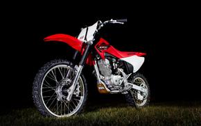 Мотоциклы: Honda CRF 150F, красный, мотокросс