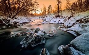 Природа: лес, деревья, лед, река, зима, природа, Норвегия, снег, закат