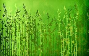 Текстуры: линии, растения, зеленый, абстракции, текстура, листочки, яркость, блики, свет, природа, фон, палки