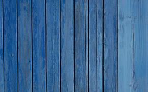 Текстуры: доски, дерево, цвет, краска