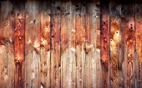 Текстуры: Дерево, текстура, фон, доски
