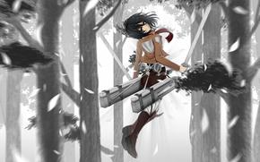 Аниме: вторжение гигантов, природа, деревья, аниме, девушка, арт, меч, оружие
