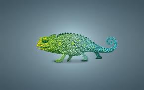 Минимализм: светлый фон, хамелеон, ящер, зеленый