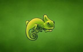 Минимализм: хамелеон, зеленый, ящер