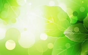 Текстуры: Листья, Лето, Рендеринг