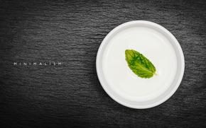 Минимализм: фотограф, лист, минимализм, тарелка