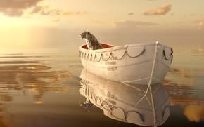 Фильмы: приключения, волны, пейзаж, небо, отражение, лодка, драма, океан, Жизнь Пи, взгляд, горизонт, вода, шлюпка, бенгальский тигр, свет, взор, кино, море, рябь, фильм