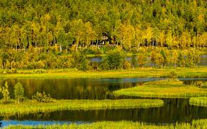 Природа: лес, озеро, осень, горы, дом, норвегия, трава, деревья, холмы