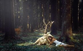 Ситуации: олень, девушка, лес