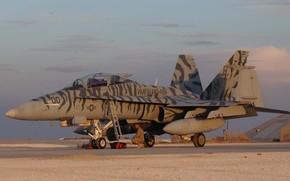 Авиация: США, палубный, штурмовик, шершень, камуфляж, истребитель-бомбардировщик