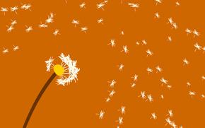 Минимализм: цветок, былинки, ветер, одуванчик