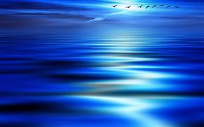 Минимализм: птицы, синева, волны