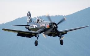 Авиация: шасси, истребитель, палубный, закрылки, пилот