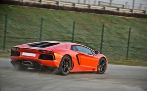 Машины: ограждение, дорога, задок, скорость, ламборгини, оранжевый, Lamborghini, авентадор
