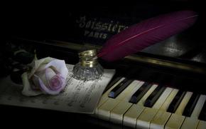 Музыка: музыка, стиль, пианино, роза, перо