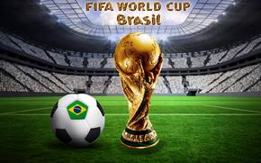 Спорт: футбол, Бразилия, мяч, кубок мира