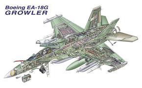 Авиация: «Гроулер», борьбы, конструкция, схема, радиоэлектронной, самолёт, палубный