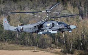 Авиация: российский, вертолёт, ударный, «Аллигатор»