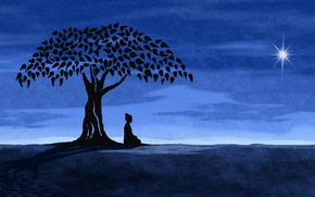 Минимализм: дерево, медитация, Ночь, звезда